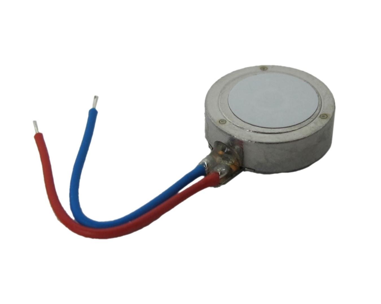 G0825001D Coin Vibration Motor